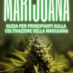 Marijuana: guida per principianti sulla coltivazione della marijuana