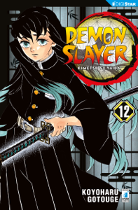 Demon Slayer - Kimetsu no yaiba 12