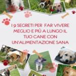 I 9 segreti per far vivere meglio e più a lungo il tuo cane con un'alimentazione sana